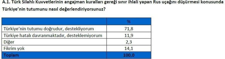 Halkın yüzde 74'ü yeni anayasaya evet dedi