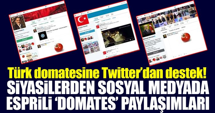 Siyasilerden Türk domatesine Twitter'dan destek!