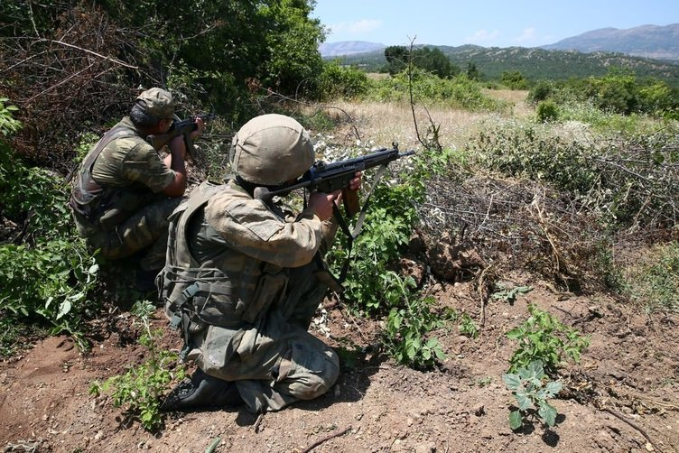 PKK'nın zehir tarlalarına operasyon