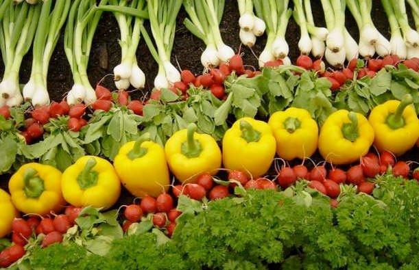 Cildinizi bu besinlerle koruyun