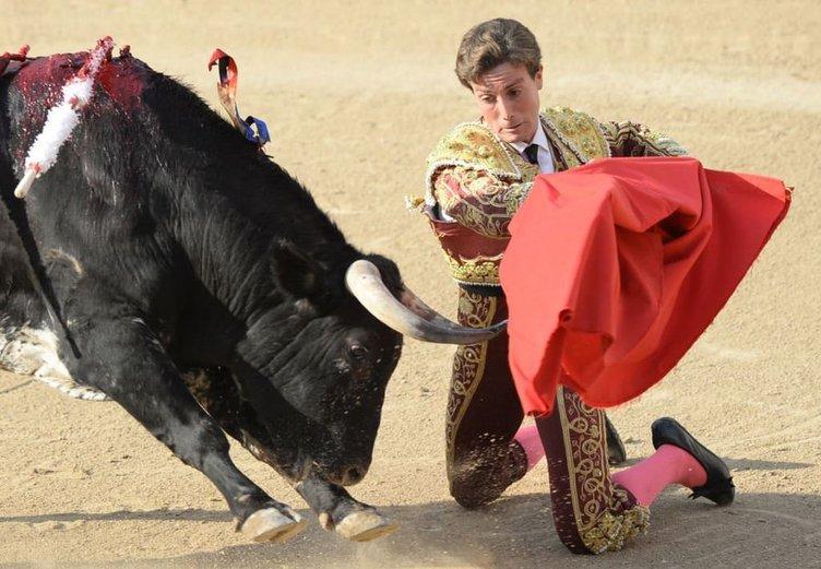 Madrid'de Boğa Güreşi