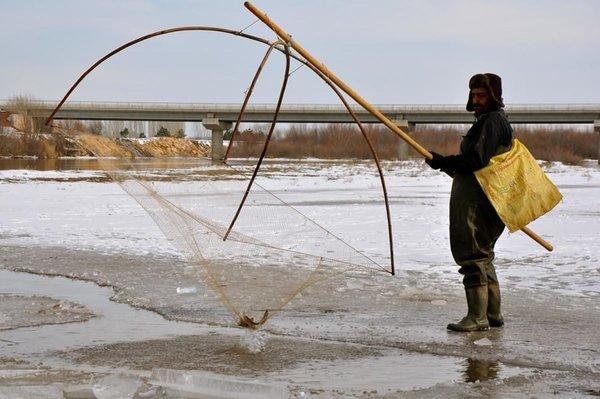 Kızılırmak'ta 'Eskimo usulü' balık avı