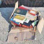 Yüzlerce kitap sahile vurdu