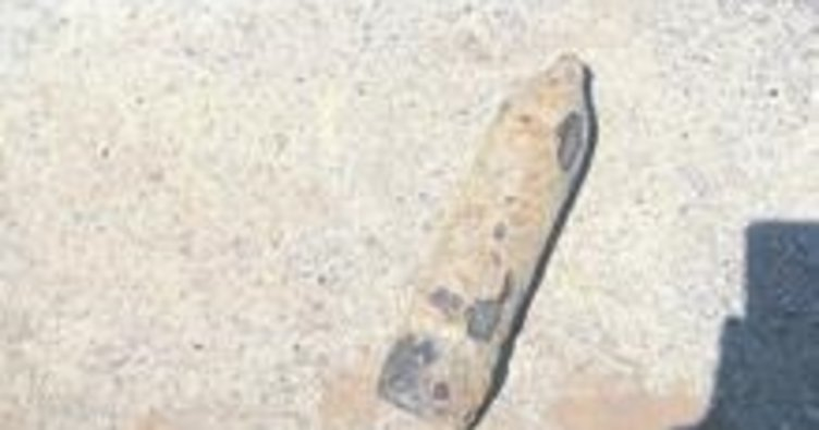 Tarlada top mermisi bulundu