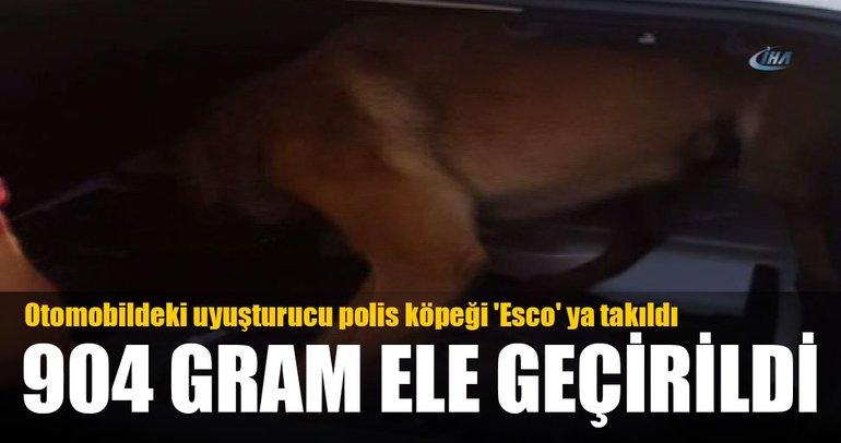 Otomobildeki uyuşturucu polis köpeği 'Esco' ya takıldı