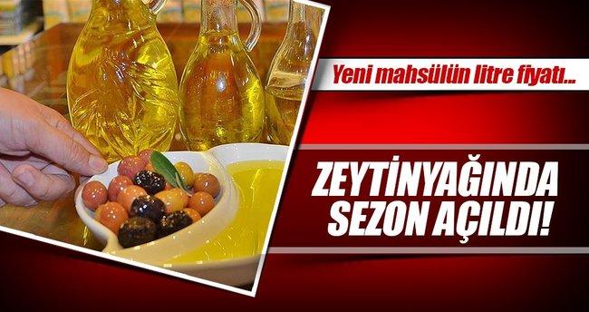 Zeytinyağında sezon 18 lira ile açıldı