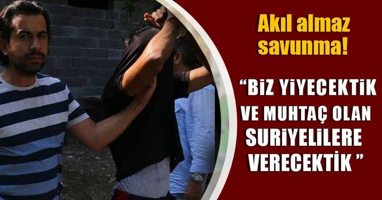 Adana'da at kasaplarından akılalmaz savunma
