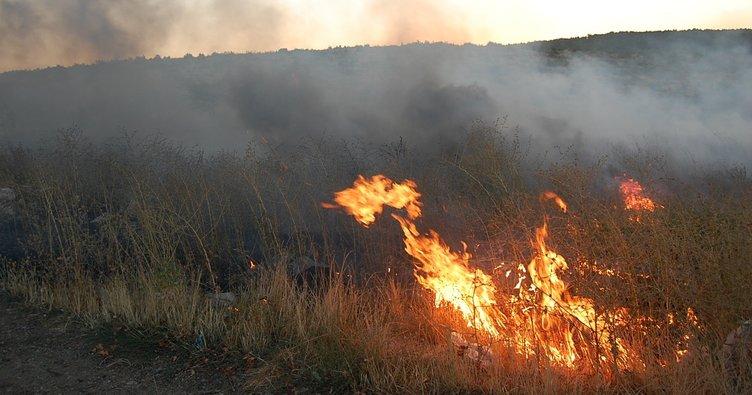 Bodrum alevler teslim oldu: 20 hektarlık sit alanı kül oldu