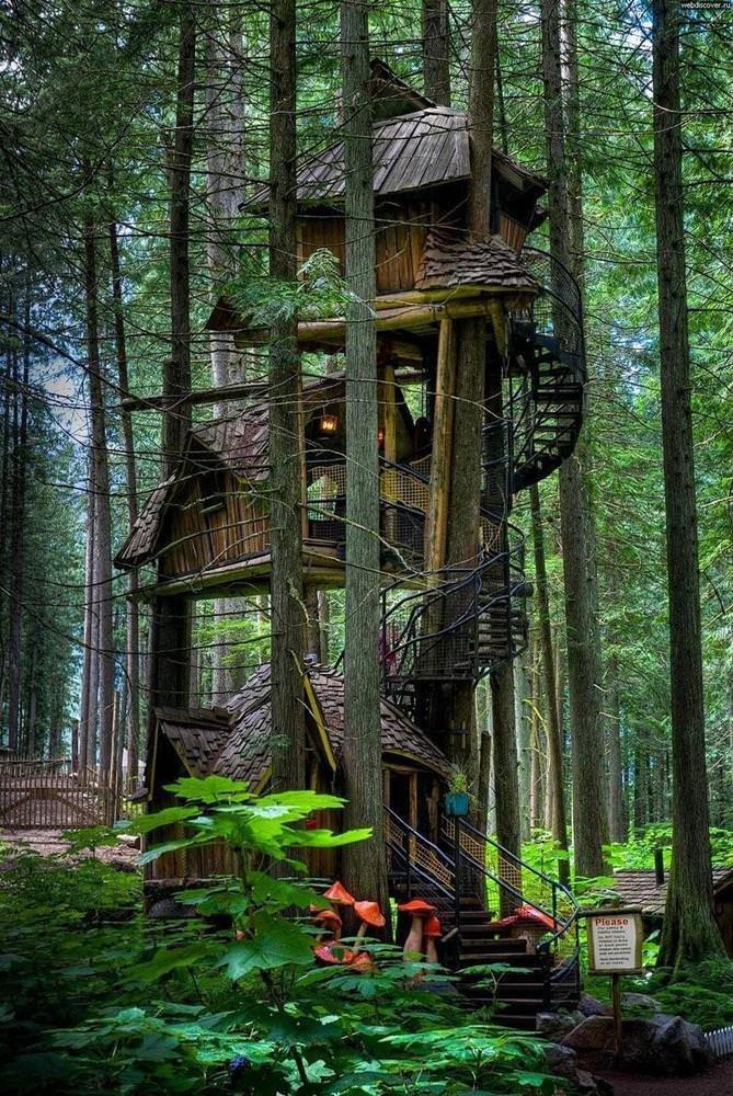 Doğayla iç içe olan evler