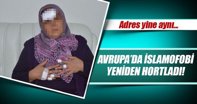 Avusturya'da başörtülü kadına çirkin saldırı