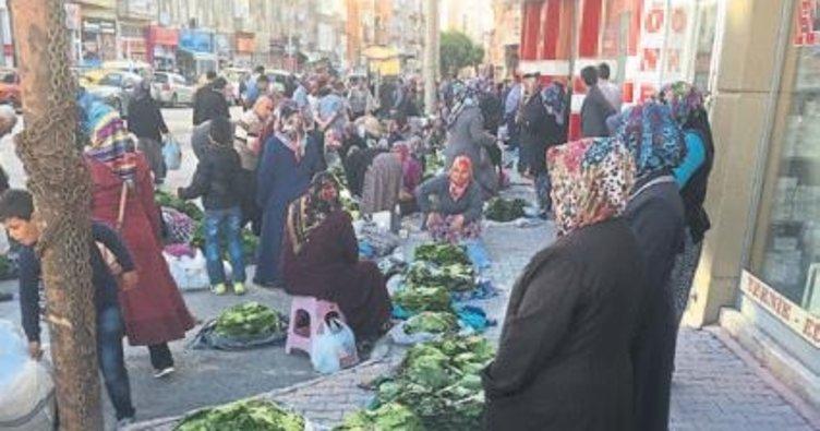 Asma yaprağı pazarına ilgi