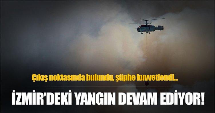 İzmir'deki makilik ve orman yangını devam ediyor