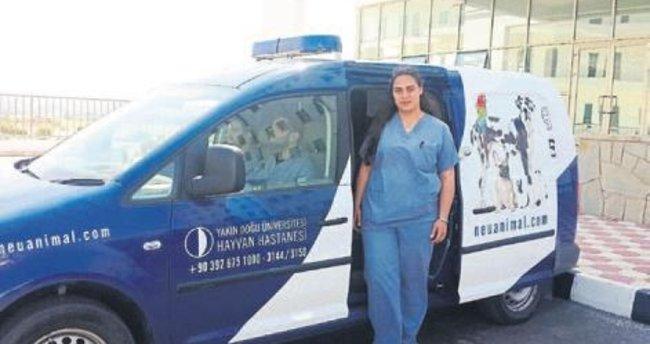Hayvan hastanesinde 7 gün 24 saat hizmet