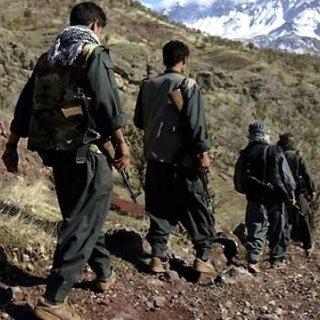 Polisi gören PKK'lı terörist kendini vurdu!