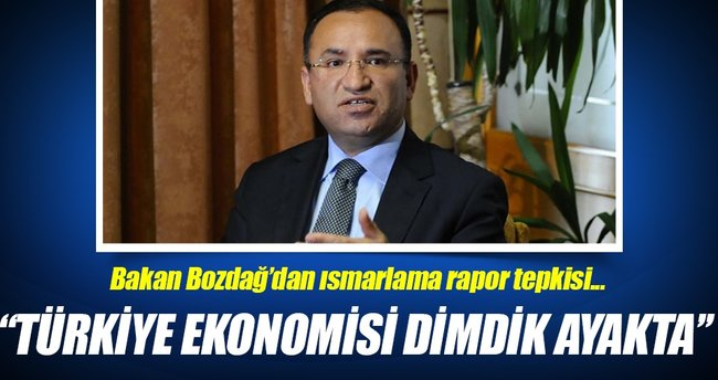 ''Türkiye ekonomisi ısmarlama Moody's raporuyla krize girecek bir ekonomi değildir''