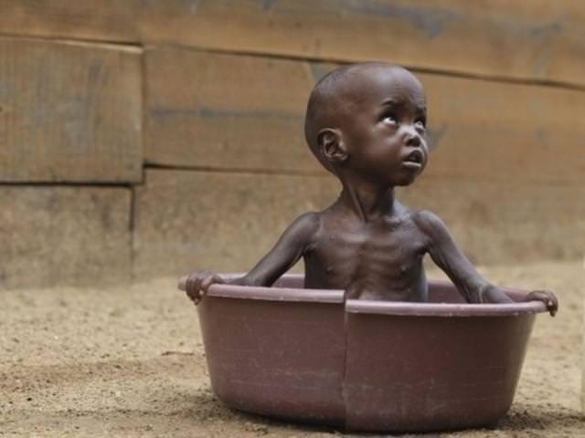 Hayatta kalabilmek için yeterli yiyecek yok