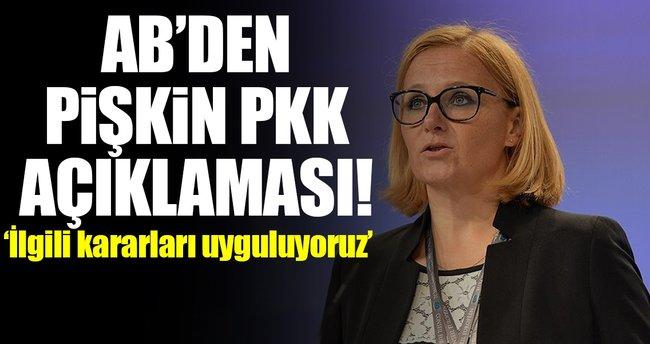 AB'den 'Almanya'daki PKK gösterisi'ne ilişkin pişkin açıklama!