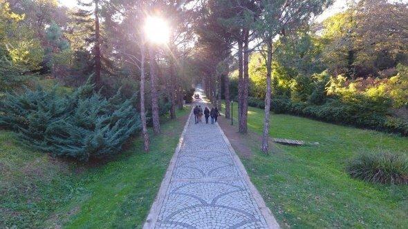 Atatürk Arboretumu'nda sonbahar manzaraları havadan görüntülendi.