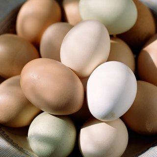 Yumurtanın zarı deyip geçmeyin...