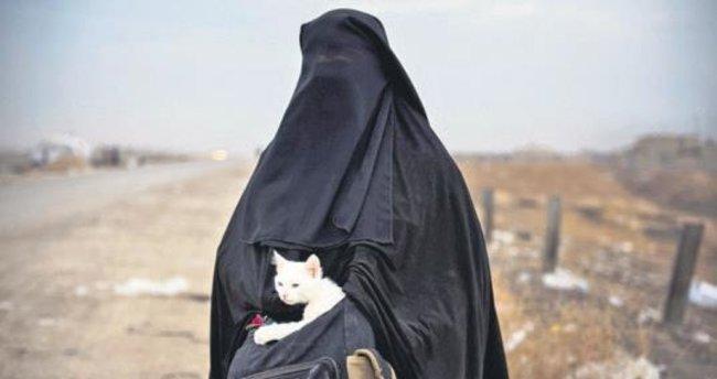Musullular yaşam mücadelesi veriyor