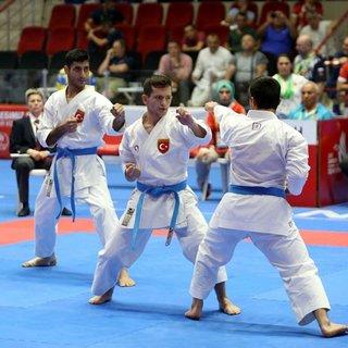 Türkiye karatede altın madalya aldı