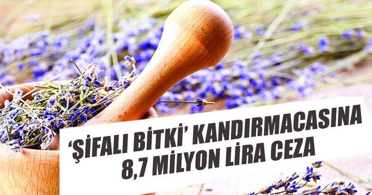 'Şifalı bitki' kandırmacasına 8.7 milyon lira ceza
