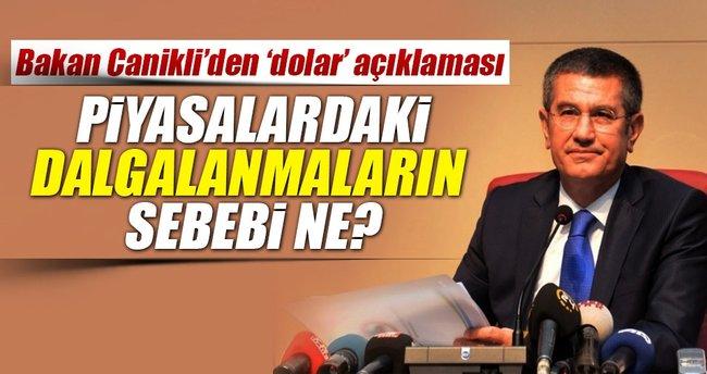 Bakan Canikli'den 'dolar' açıklaması