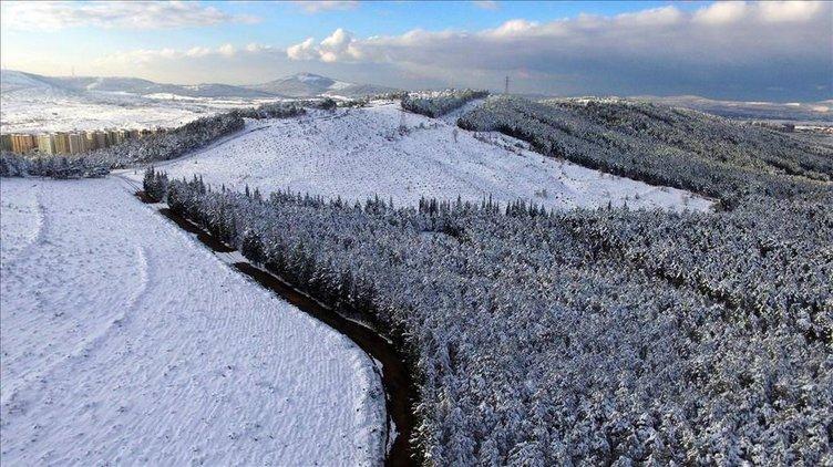 Aydos Ormanı'ndan kış manzaraları