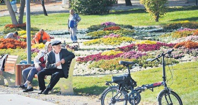 ANFA, Altınpark'ı kış çiçekleri ile süsledi