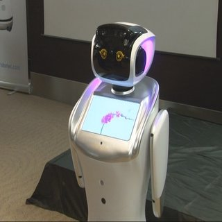 Çinli robot iş arkadaşınız olabilir