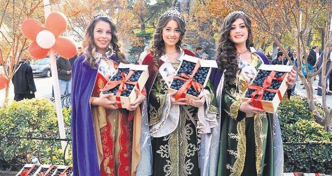 Zeytin festivalinde altın yağacak