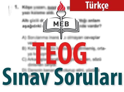 TEOG Türkçe Sınav Soruları ve Cevapları