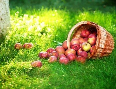 Sonbahar yorgunluğunu yaşamak istemiyorsanız…