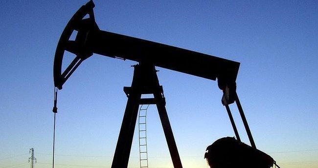 Alaska'da önemli miktarda petrol rezervi bulundu