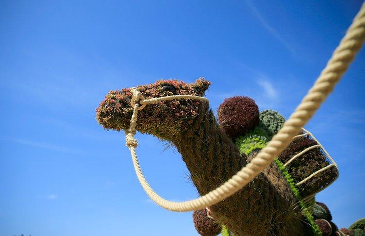 Bitki heykellerine son dokunuşlar