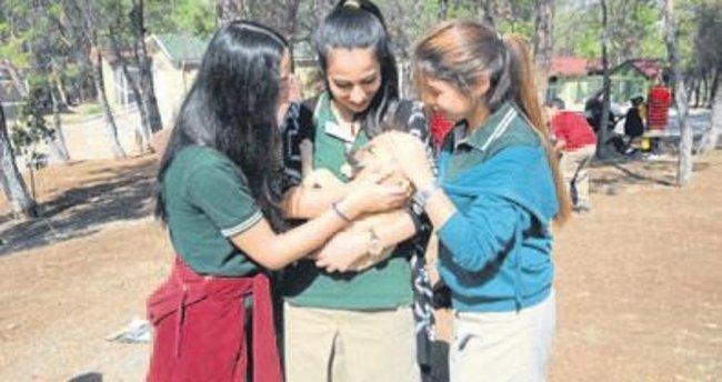 Minik öğrenciler hayvanları sevdi