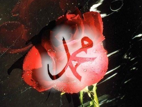 Hz. Muhammed (s.a.v)'in 7 vasiyeti