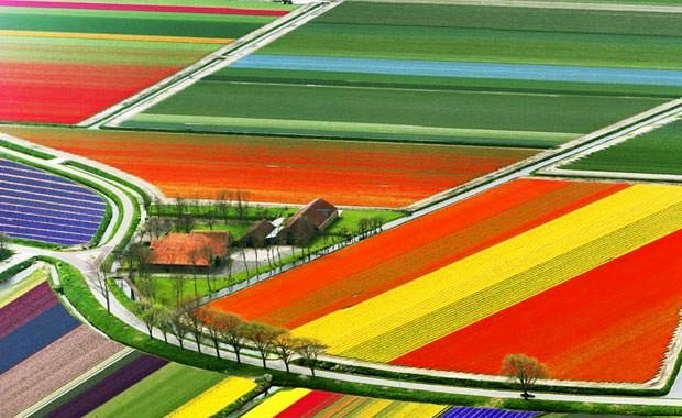 Renklerin büyüleyici gücü