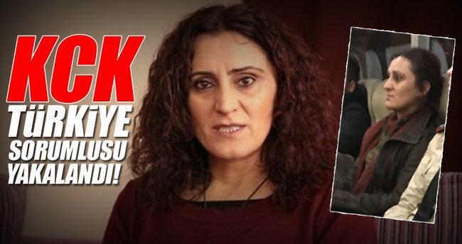 KCK Türkiye sorumlusu yakalandı