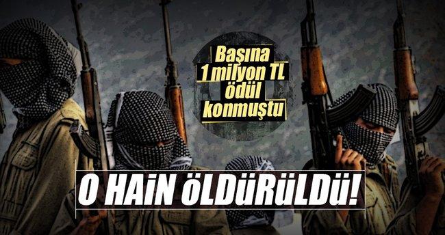 Başına 1 milyon TL ödül konulan terörist Bitlis'te öldürüldü