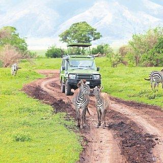 Tanzanya'da haz var mı?