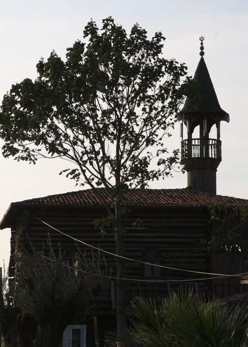 Türkiye'nin en gezgin camisi
