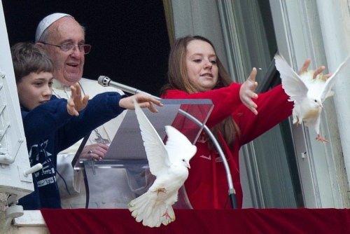 Papa'nın güvercinlerine kargayla martı saldırdı