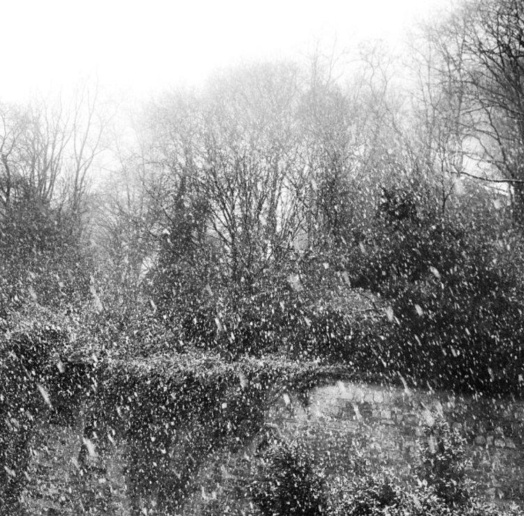 Ünlülerin paylaştığı kar fotoğrafları