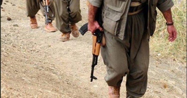 Siirt'te bir PKK'lı terörist etkisiz hale getirildi