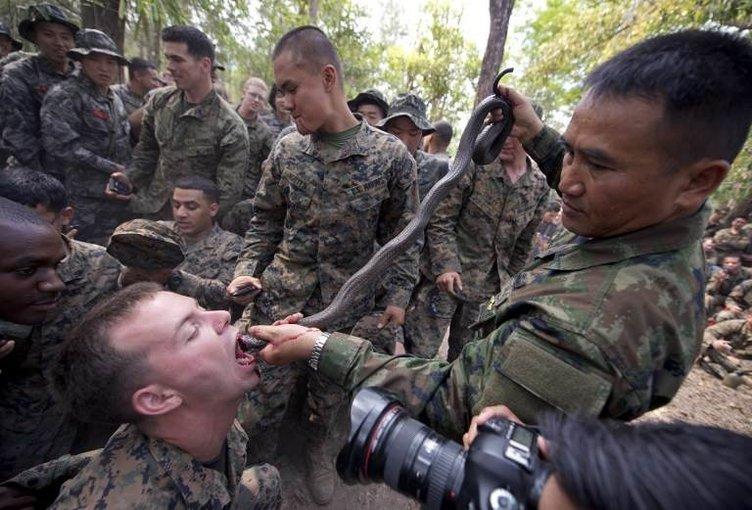 Kobra kanı içerek eğitim