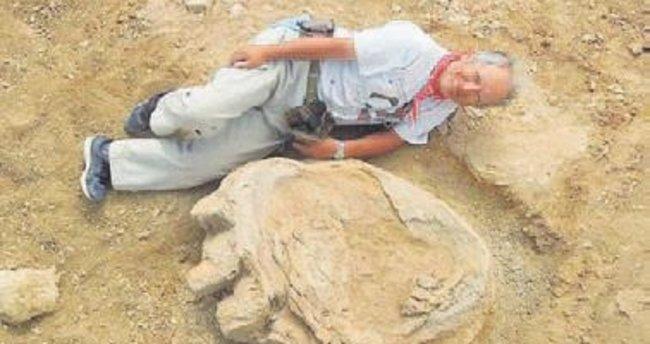 En büyük dinozor ayak izi bulundu