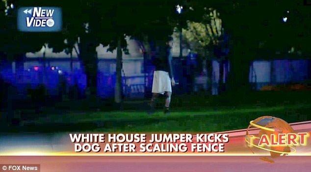 Beyaz Saray'a bir girme girişimi daha