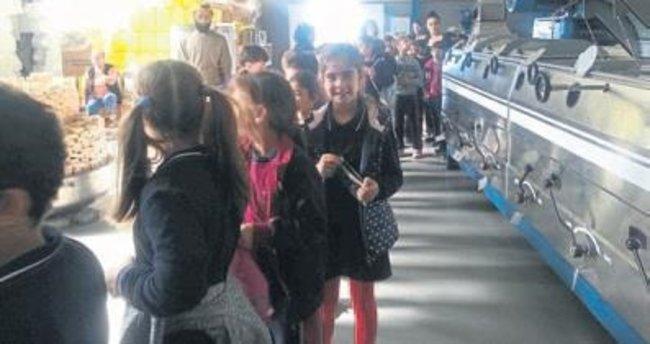 Öğrenciler zeytinyağı fabrikasını ziyaret etti