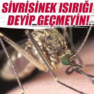 Sivrisinek ısırığı deyip geçmeyin!